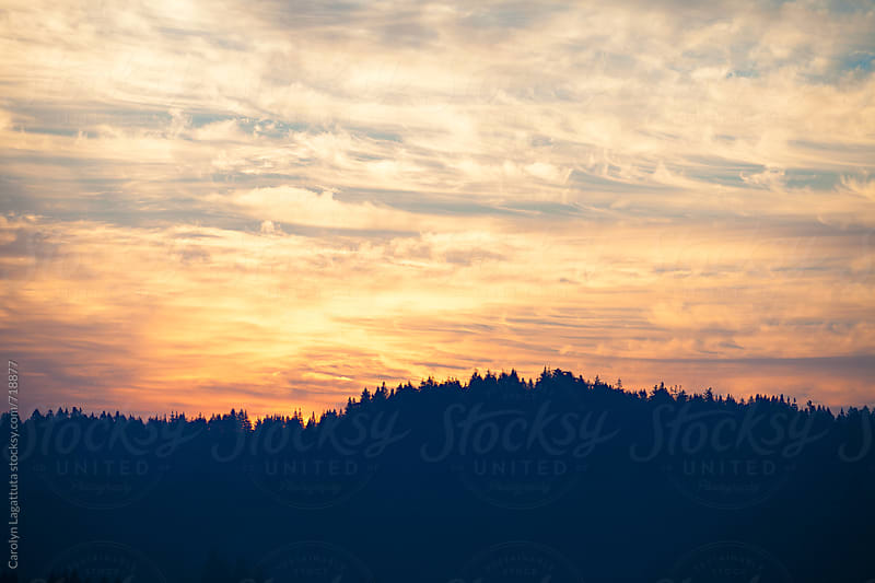 Sunrise over a vista of trees by Carolyn Lagattuta for Stocksy United