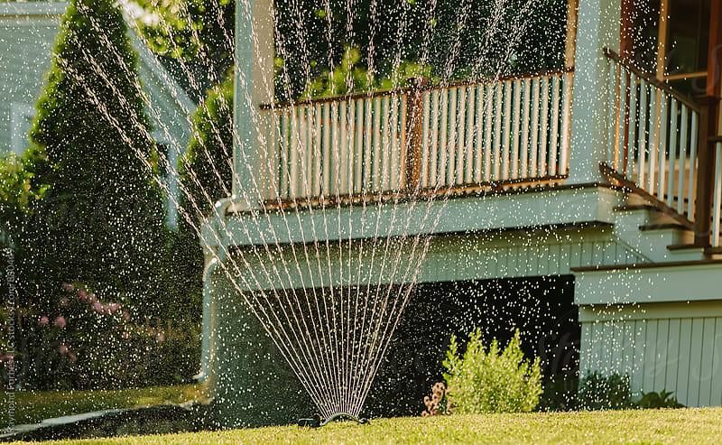 Summer Sprinkler by Raymond Forbes LLC for Stocksy United