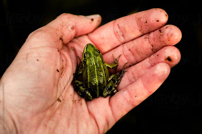 Holding mr. Frog by Robert-Paul Jansen for Stocksy United