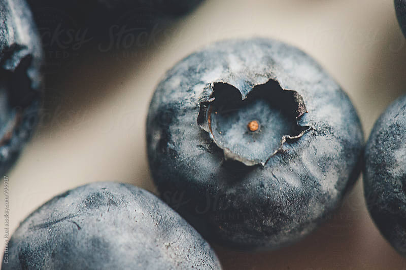 Blueberry Love by Courtney Rust for Stocksy United