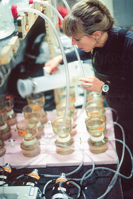 Woman scientist filtering water samples to collect chlorophyll by Mihael Blikshteyn for Stocksy United
