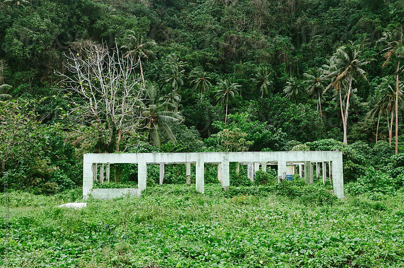 Abandoned building and jungle, Samoa. by Thomas Pickard for Stocksy United