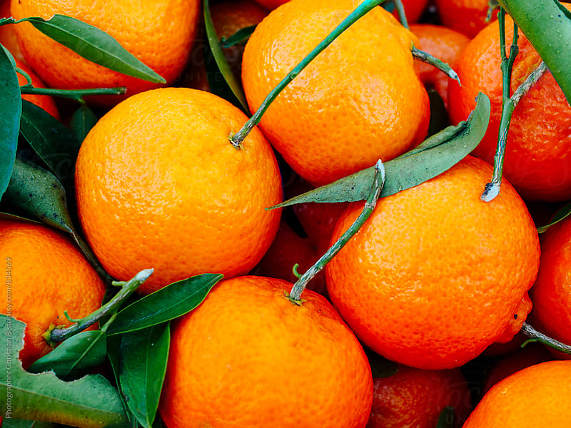 Mandarins with stems and leaves by Photographer Christian B for Stocksy United