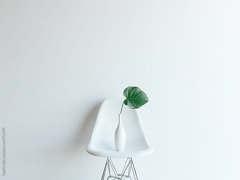 Chair with Green Leaf by Sophia Hsin for Stocksy United
