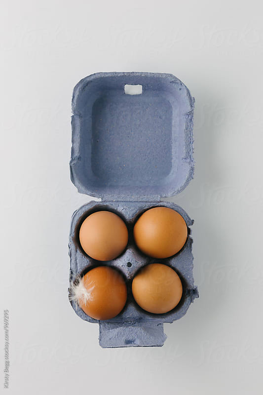 Four eggs in a blue egg box with a single hen feather by Kirsty Begg for Stocksy United