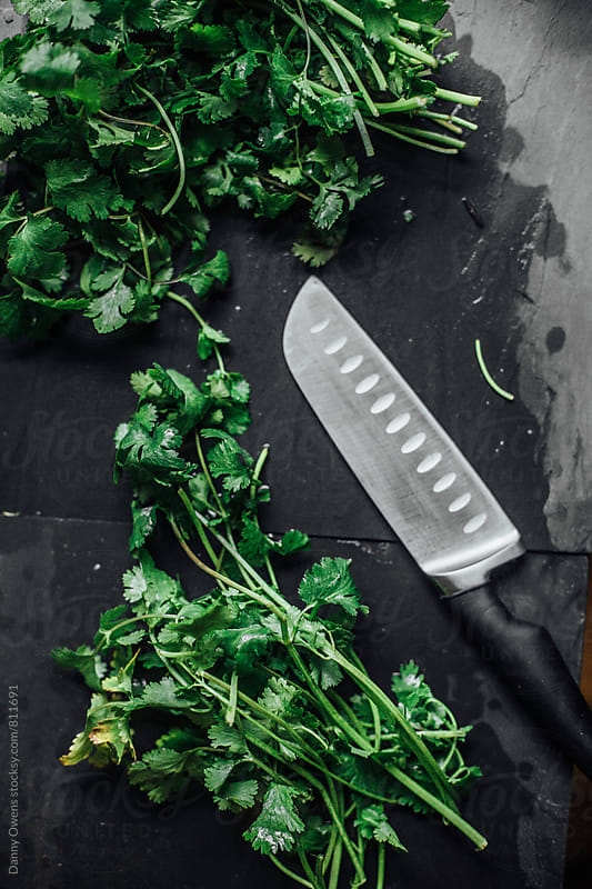 Cilantro & Lime on Slate by Danny Owens for Stocksy United