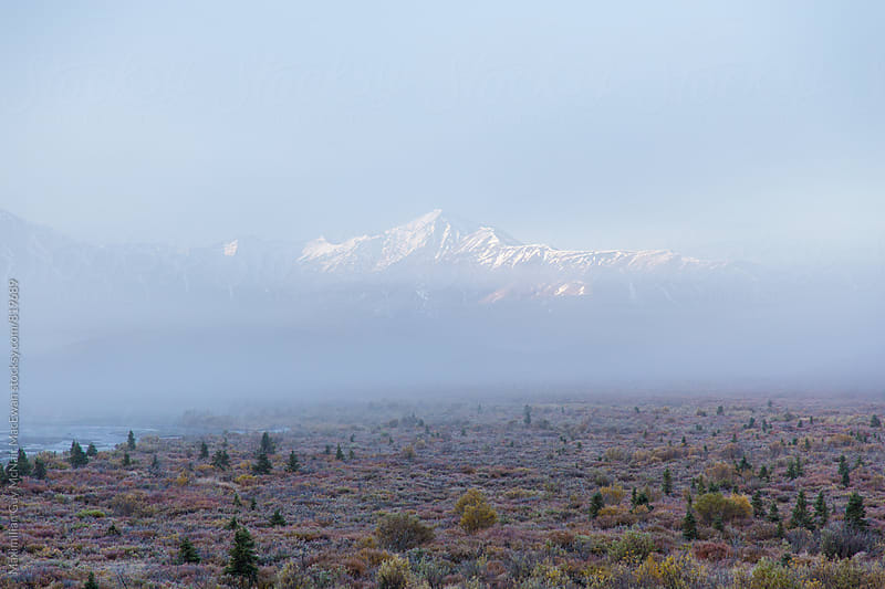 The Alaskan Mountain Range emerges through fog by Maximilian Guy McNair MacEwan for Stocksy United