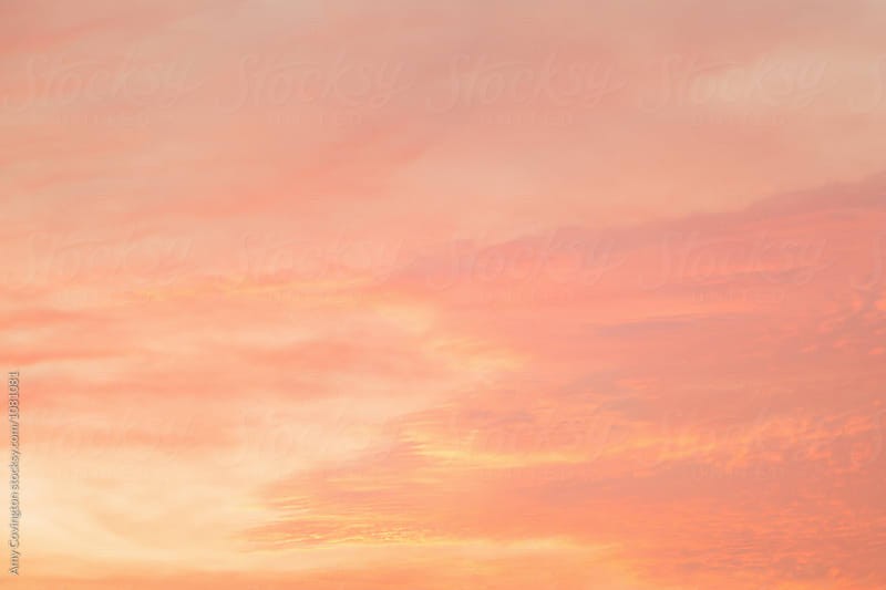 Pink clouds at sunset by Amy Covington for Stocksy United