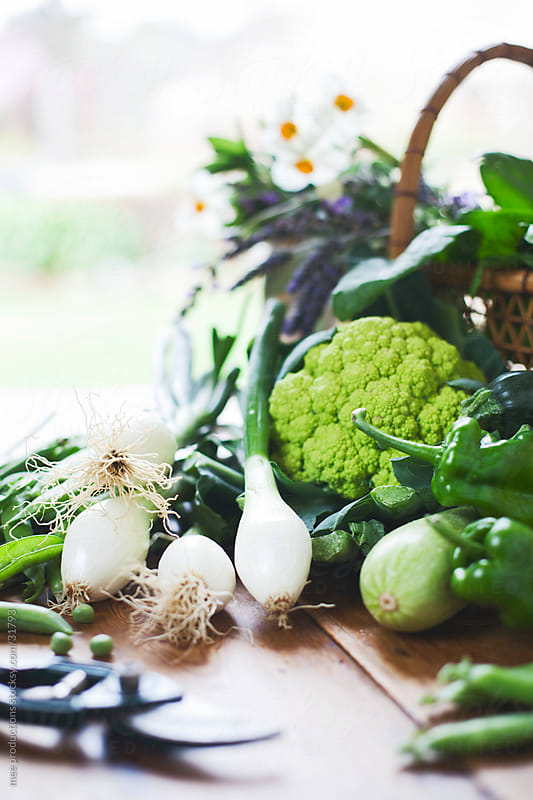 Healthy eating, vegetables in the kitchen. by mee productions for Stocksy United