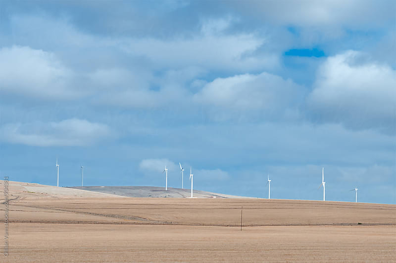 wind farm  by Gillian Vann for Stocksy United