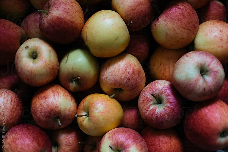 Fresh Apple by Davide Illini for Stocksy United