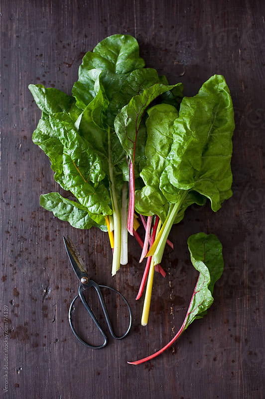 Swiss chard by Veronika Studer for Stocksy United