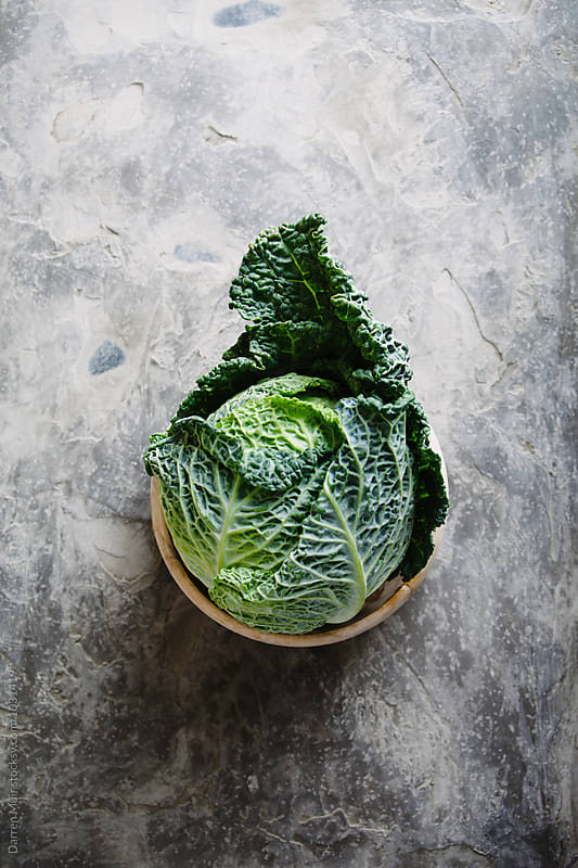 Savoy cabbage. by Darren Muir for Stocksy United