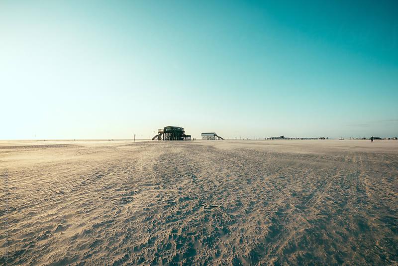 Windy beach by Christian Zielecki for Stocksy United