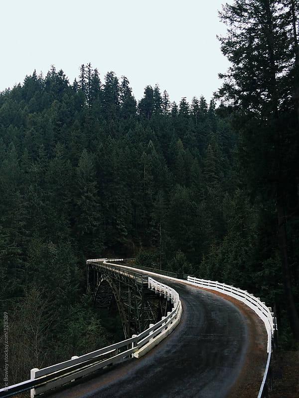 Northwest Steel Bridge by Eric Bowley for Stocksy United
