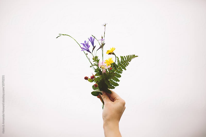 Foraged Wild Flowers by Nate & Amanda Howard for Stocksy United