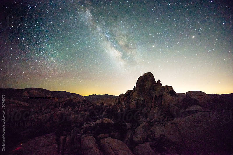 Joshua tree at night. by Christian McLeod Photography for Stocksy United