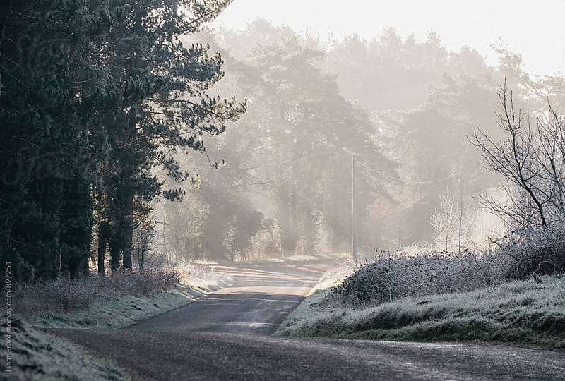 Rays of sunlight and frost along a remote country road. Norfolk, UK. by Liam Grant for Stocksy United