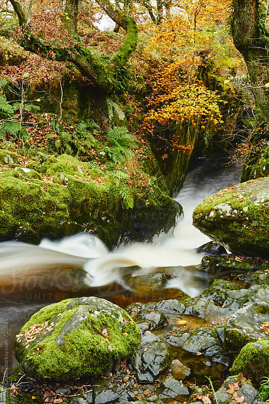 Waterfall near Aira Force in autumn. Cumbria, UK. by Liam Grant for Stocksy United
