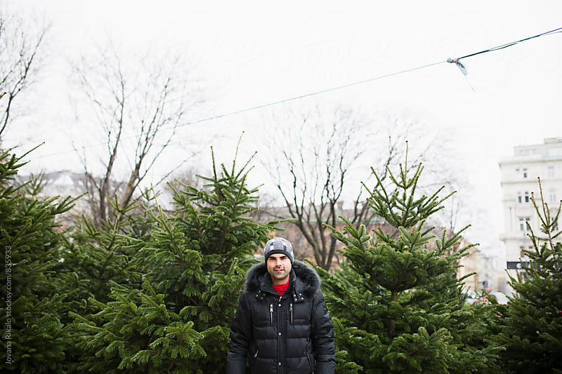 Happy man in a Christmas tree shop by Jovana Rikalo for Stocksy United