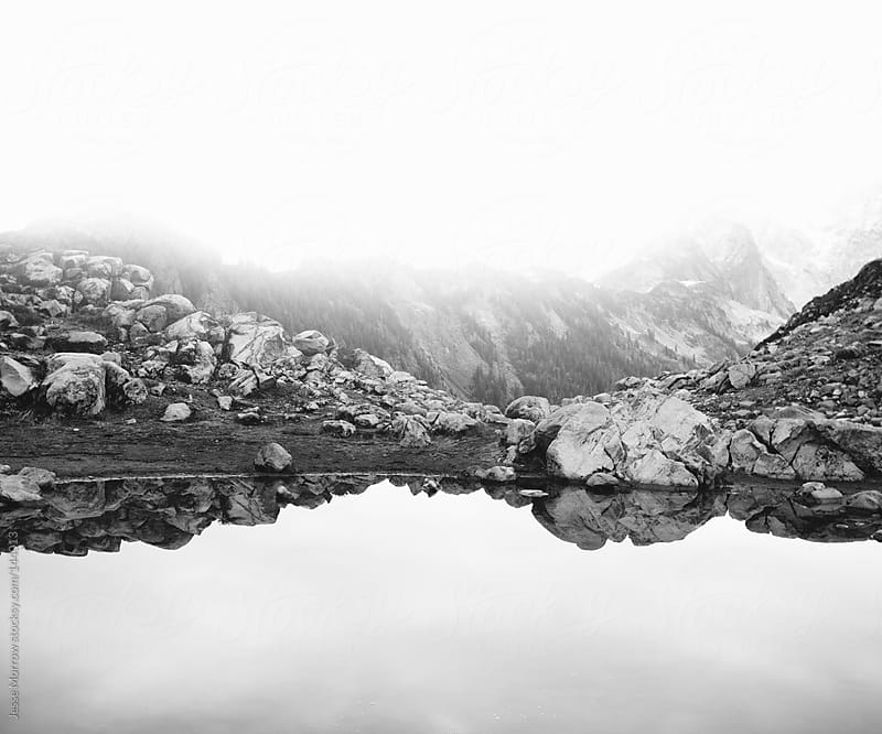 Reflection pond in black and white by Jesse Morrow for Stocksy United