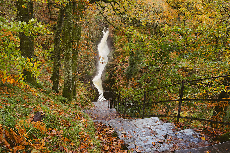 Steps to Aira Force waterfall in autumn.  by Liam Grant for Stocksy United