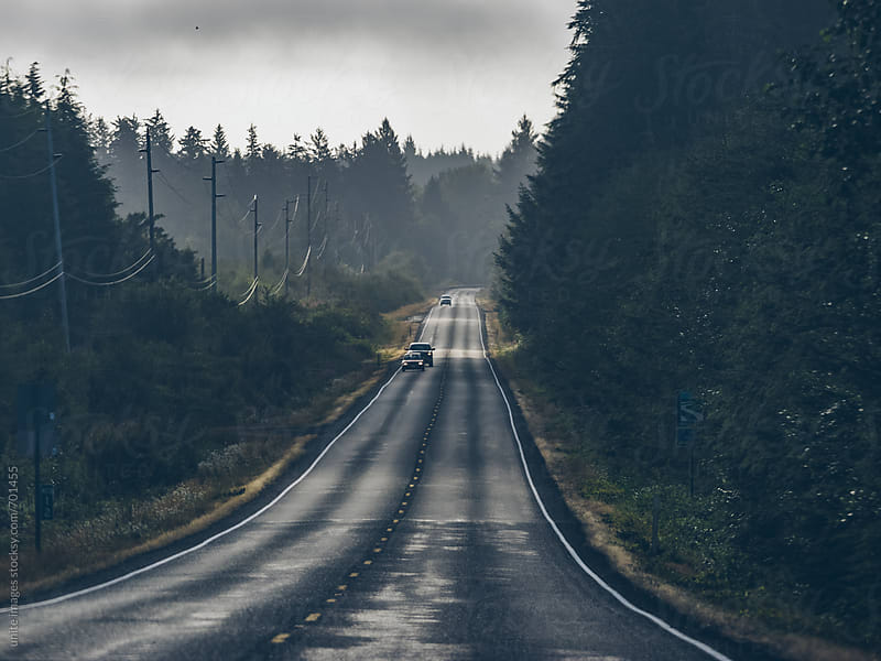 empty highway through the forest in WA by yuanyuan xie for Stocksy United