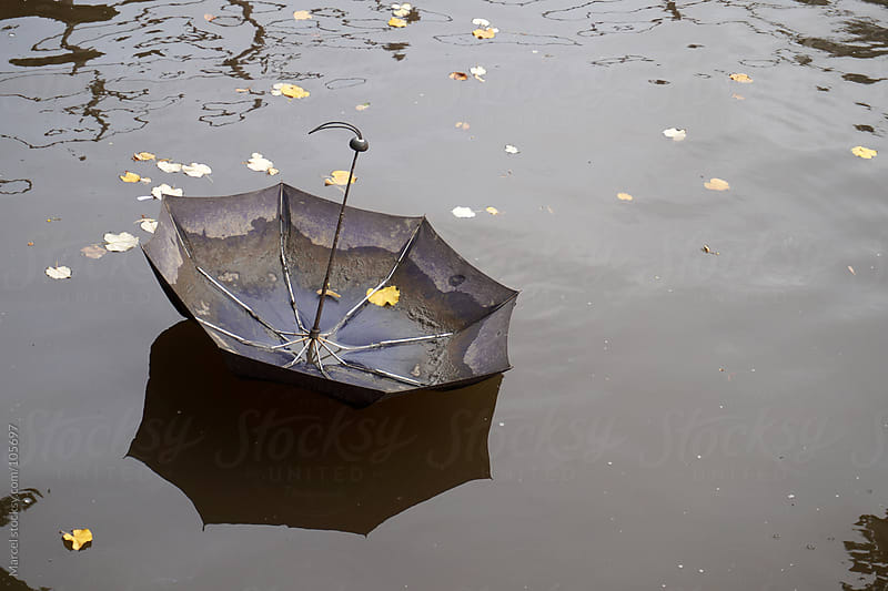 Umbrella floating on water in fall by Marcel for Stocksy United