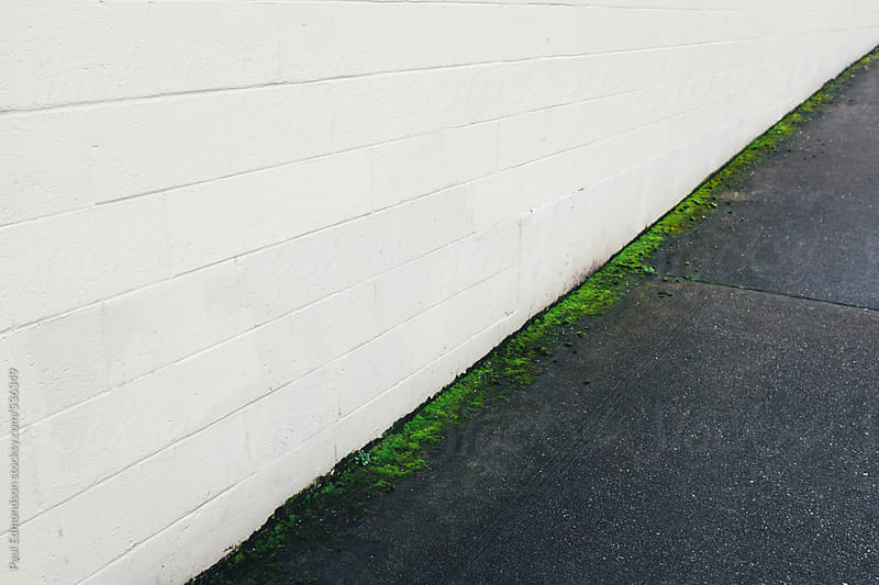 Building wall and sidewalk, thin line of green moss along edge by Paul Edmondson for Stocksy United