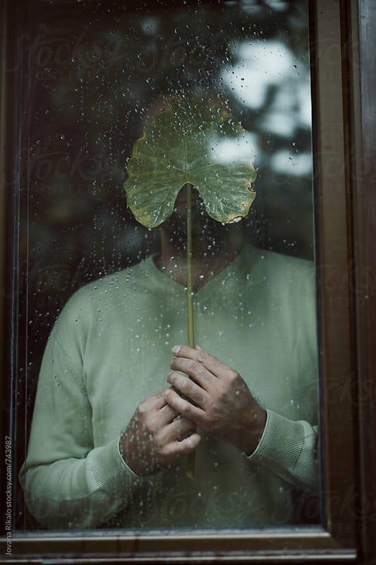 Man standing next to window and holding big leaf by Jovana Rikalo for Stocksy United