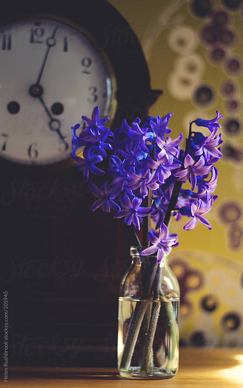 Hyacinths and a clock by Helen Rushbrook for Stocksy United