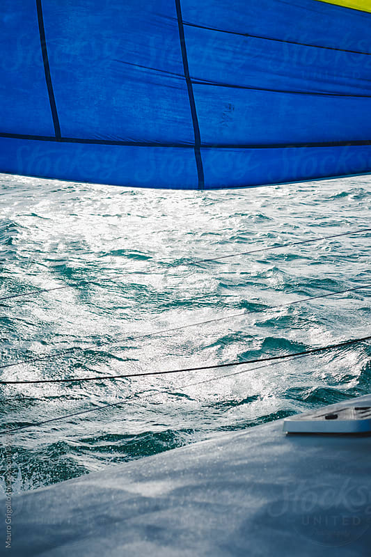 Sailboat by Mauro Grigollo for Stocksy United