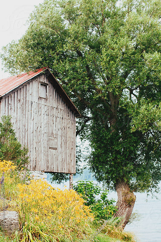 Old barn on the water  by Abby Mortenson for Stocksy United
