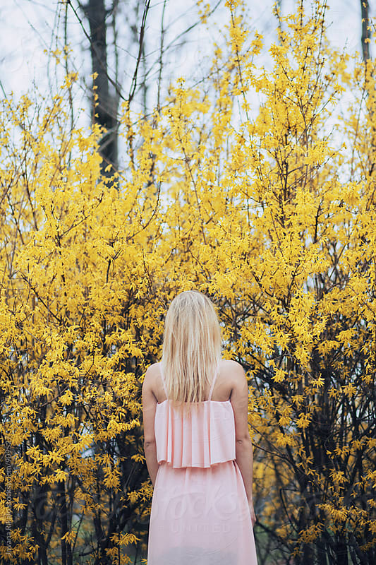 Back view of a young woman standing in yellow flowers by Jovana Rikalo for Stocksy United