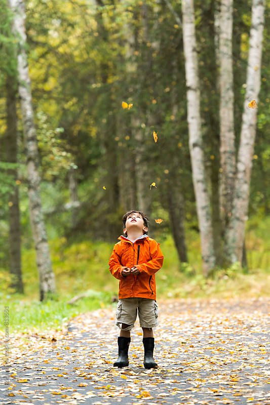 young child looking up at falling leaves on a forest path by Tara Romasanta for Stocksy United