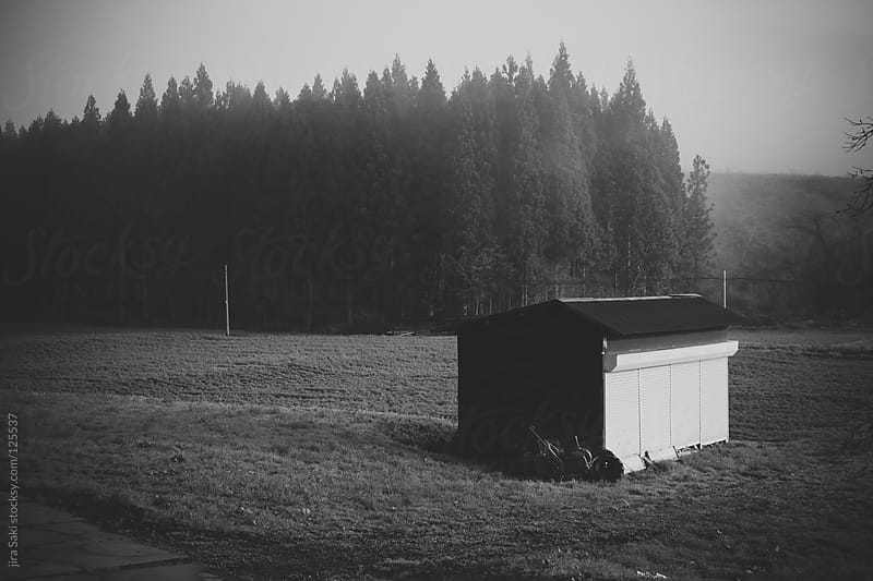countryside by jira Saki for Stocksy United
