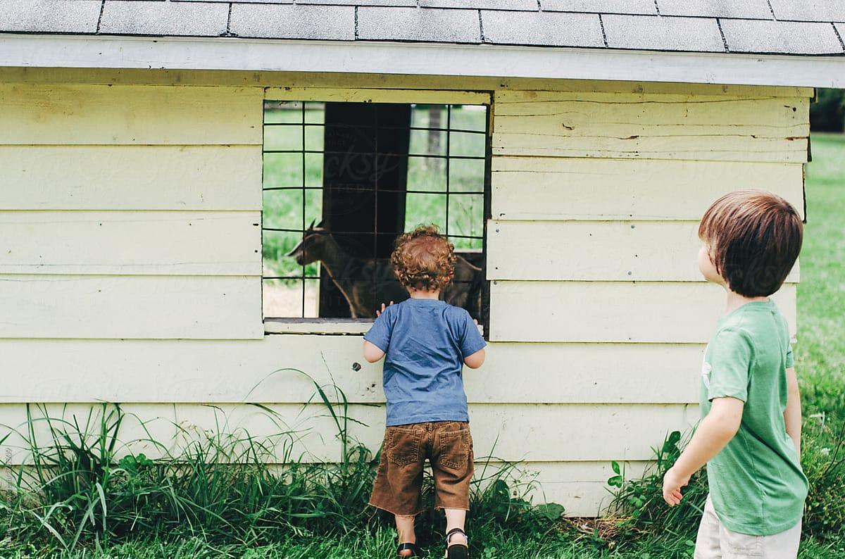 Boys looking at tall young boy