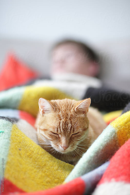 Cat and man sleeping on a couch by Marcel for Stocksy United