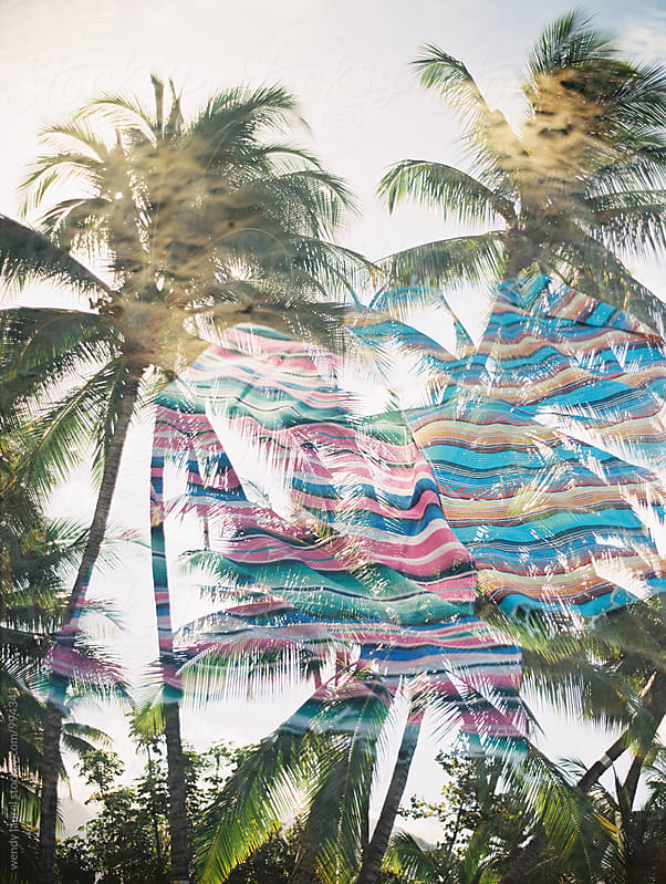 double exposure of stripe beach blanket with palm trees by wendy laurel for Stocksy United