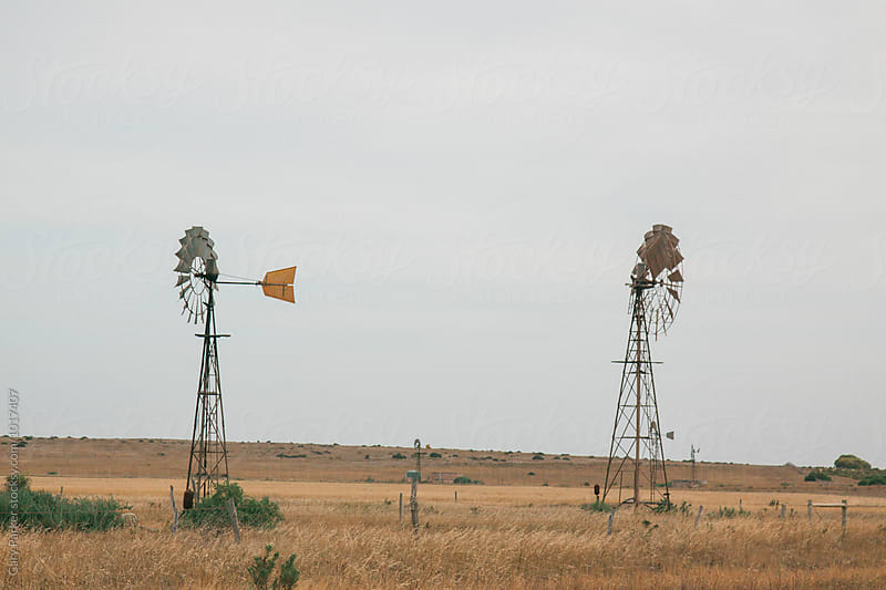 Windmills in the outback by Gary Parker for Stocksy United
