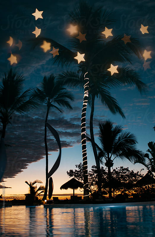 Tropical destination by night with custom made star shape bokeh by Beatrix Boros for Stocksy United