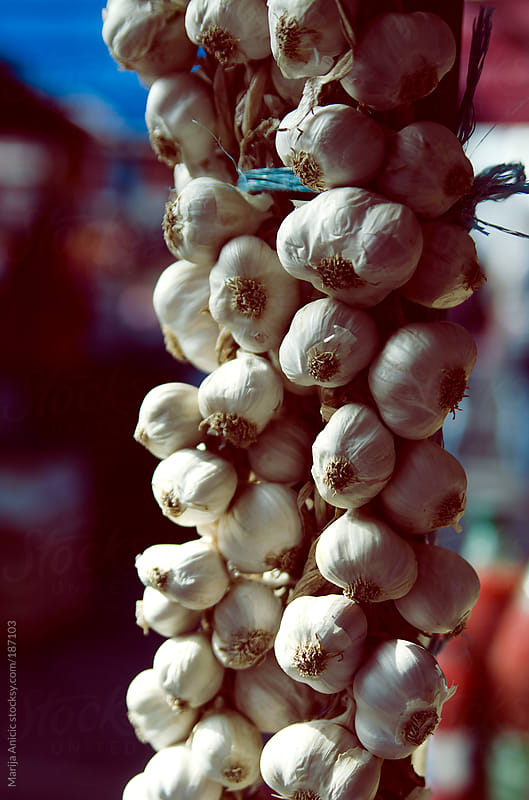 Garlic on the market by Marija Anicic for Stocksy United