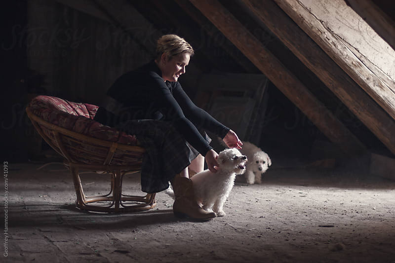 Woman in Attic Playing with Bichon Dogs by Geoffrey Hammond for Stocksy United
