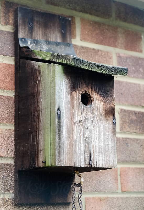 Empty nesting box by Jon Attaway for Stocksy United