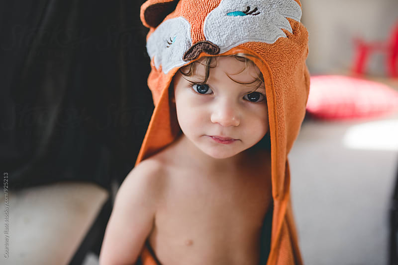 what does the fox say by Courtney Rust for Stocksy United