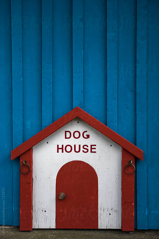 Dog shelter with little house shape by Luca Pierro for Stocksy United