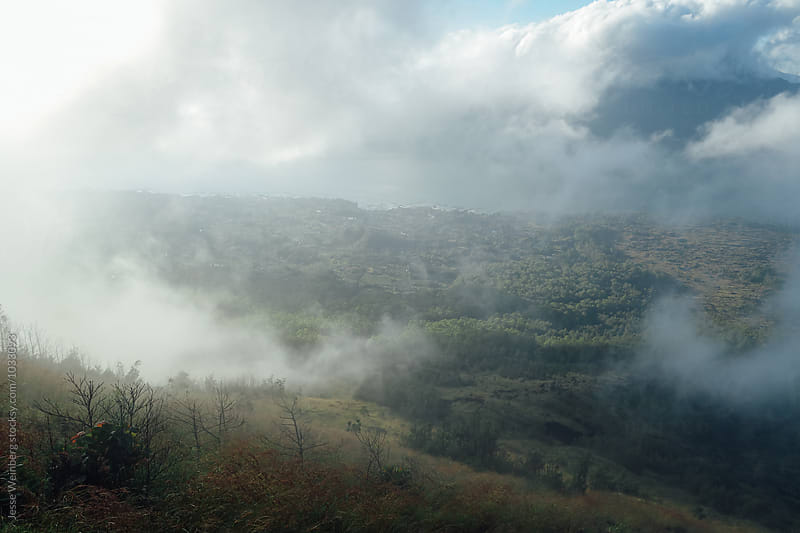 Beautiful Foggy Landscape by Jesse Weinberg for Stocksy United