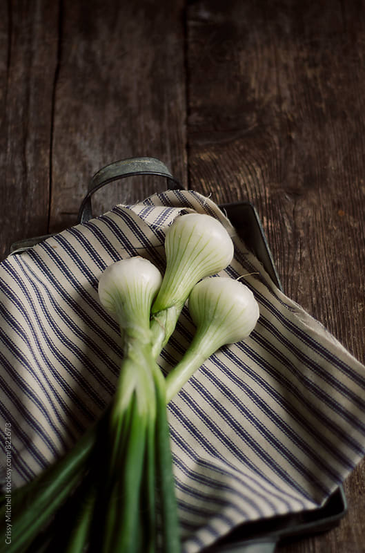 green onions by Crissy Mitchell for Stocksy United