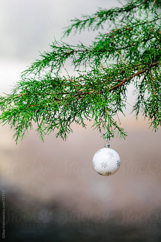 snowflake christmas bauble hanging on a pine tree branch outside by Gillian Vann for Stocksy United