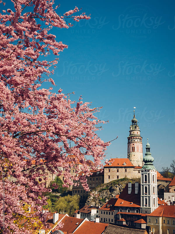 Spring Blossoms and Castle in Cesky Krumlov by Geoffrey Hammond for Stocksy United